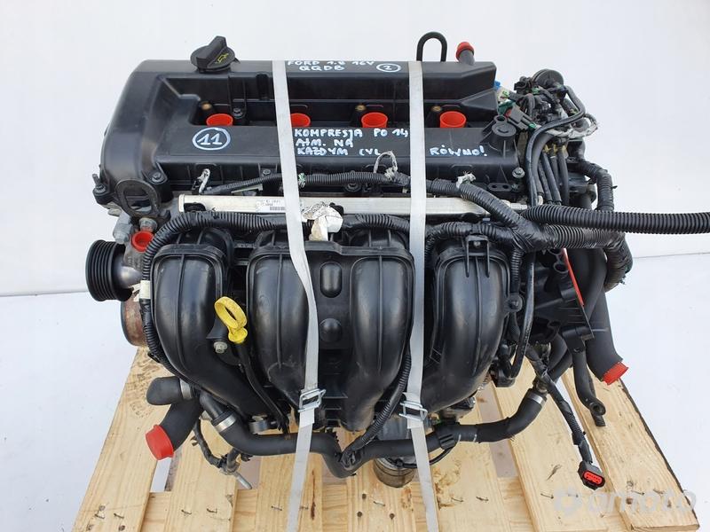 SILNIK Ford Focus II MK2 1.8 16V 125KM 62tyś QQDB