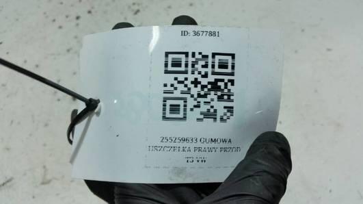 255259633 GUMOWA USZCZELKA PRAWY PRZOD T3 VW